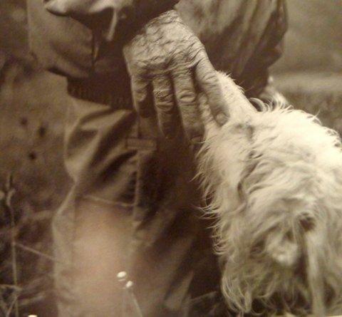 Tonton main sur son chien